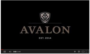 If the YouTube video about Avalon doesn't automatically start in the area above, please click here to view on YouTube.